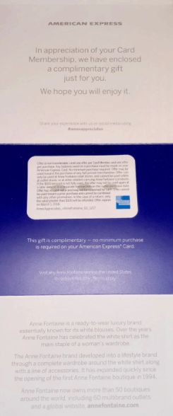Amex Travel Credit Delta Gift Card